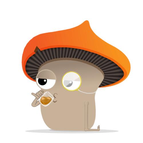 Dutch Mushrooms Magic Truffle Tea